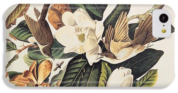 Cuckoo On Magnolia Grandiflora IPhone 5c Case by John James Audubon