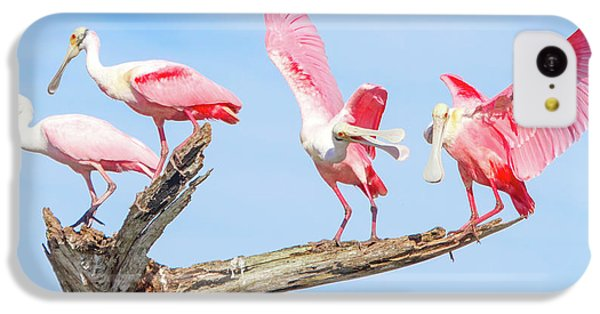 Day Of The Spoonbill  IPhone 5c Case by Mark Andrew Thomas
