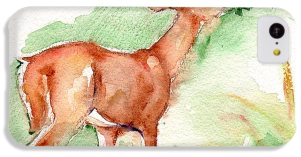 Deer Painting In Watercolor IPhone 5c Case by Maria's Watercolor