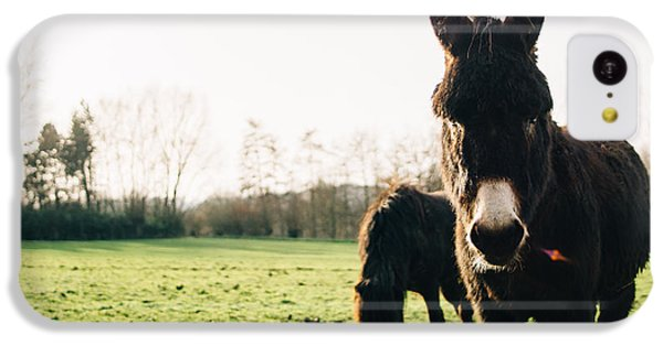 Donkey And Pony IPhone 5c Case by Pati Photography