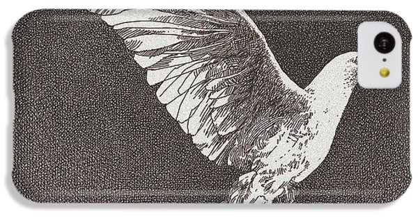 Dove Drawing IPhone 5c Case by William Beauchamp
