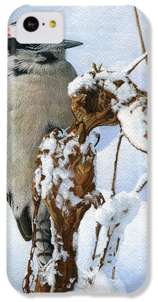 Downy Woodpecker  IPhone 5c Case by Ken Everett