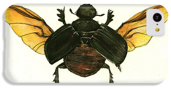 Dung Beetle IPhone 5c Case by Juan Bosco