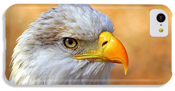 Eagle 7 IPhone 5c Case by Marty Koch