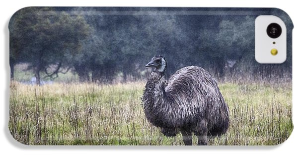 Early Morning Stroll IPhone 5c Case by Douglas Barnard