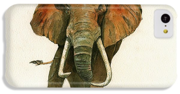 Elephant Painting           IPhone 5c Case by Juan  Bosco