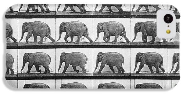 Elephant Walking IPhone 5c Case by Eadweard Muybridge