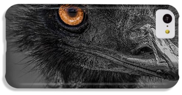 Emu IPhone 5c Case by Paul Freidlund