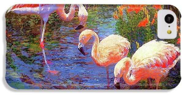 Flamingos, Tangerine Dream IPhone 5c Case by Jane Small
