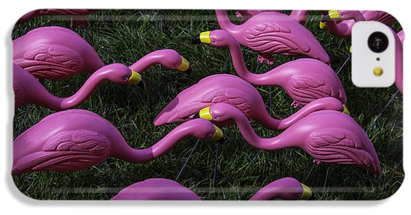 Flock Of  Plastic Flamingos IPhone 5c Case by Garry Gay