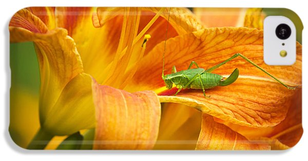 Flower With Company IPhone 5c Case by Christina Rollo