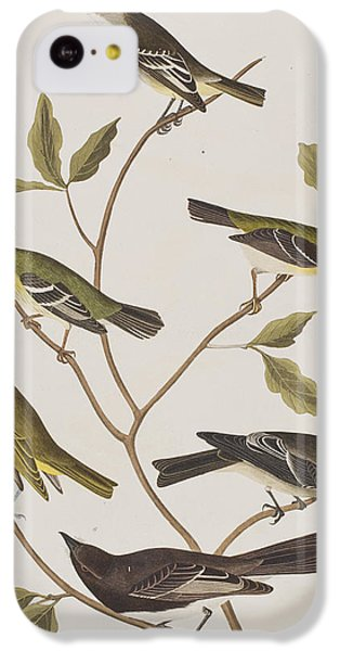 Fly Catchers IPhone 5c Case by John James Audubon