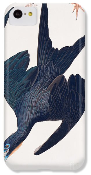 Frigate Penguin IPhone 5c Case by John James Audubon