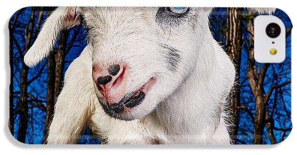 Goat High Fashion Runway IPhone 5c Case by TC Morgan