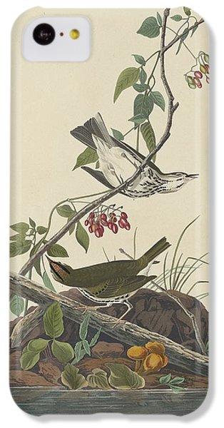 Golden-crowned Thrush IPhone 5c Case by John James Audubon