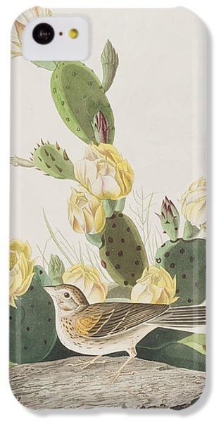 Grass Finch Or Bay Winged Bunting IPhone 5c Case by John James Audubon