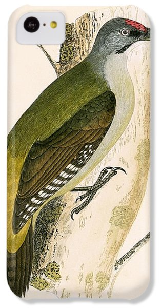 Grey Woodpecker IPhone 5c Case by English School