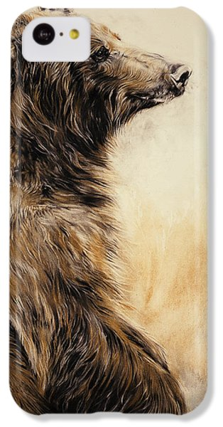 Grizzly Bear 2 IPhone 5c Case by Odile Kidd