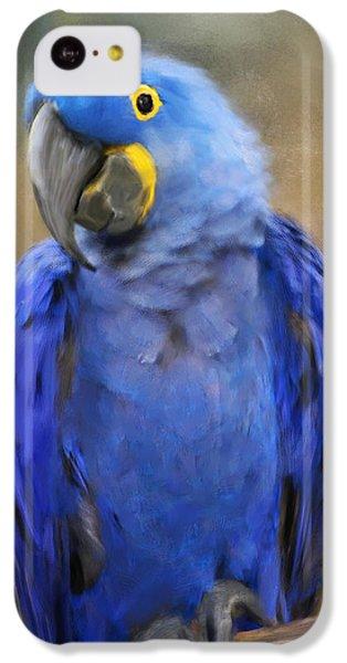 Hyacinth Macaw  IPhone 5c Case by Jai Johnson