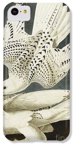 Iceland Or Jer Falcon IPhone 5c Case by John James Audubon