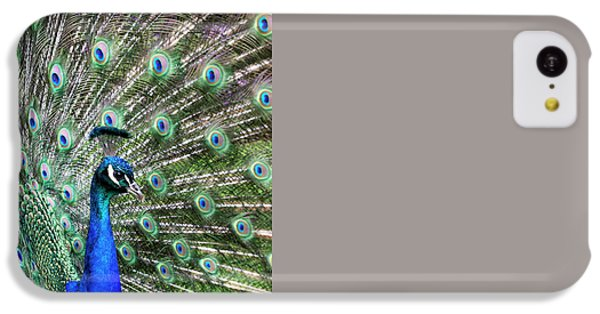 Iridescent Eyes IPhone 5c Case by Tim Gainey