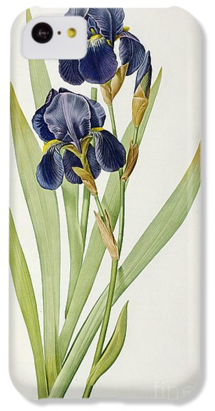 Iris Germanica IPhone 5c Case by Pierre Joseph Redoute