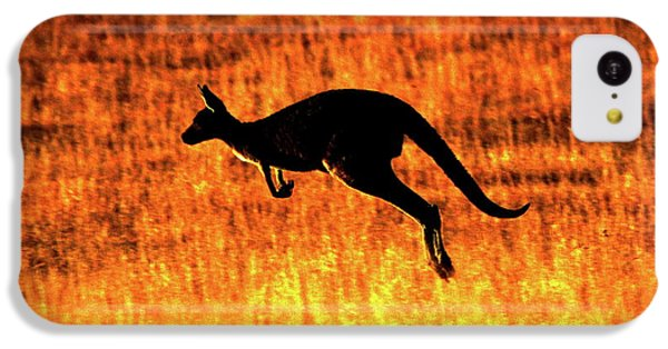 Kangaroo Sunset IPhone 5c Case by Bruce J Robinson