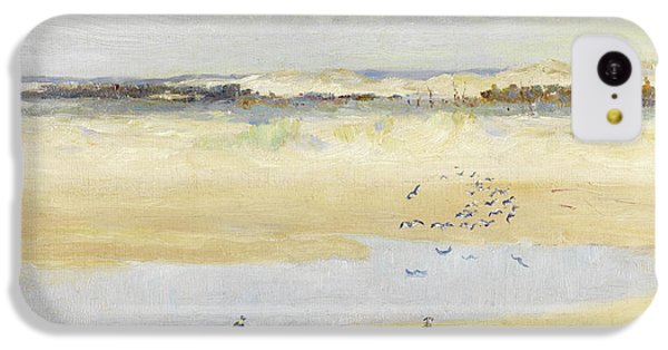 Lapwings By The Sea IPhone 5c Case by William James Laidlay