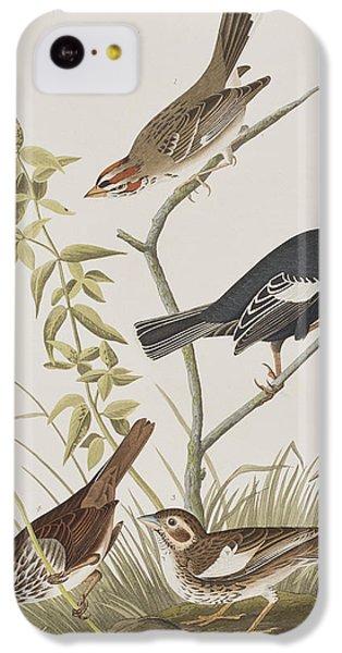 Lark Finch Prairie Finch Brown Song Sparrow IPhone 5c Case by John James Audubon