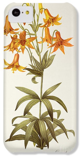 Lilium Penduliflorum IPhone 5c Case by Pierre Joseph Redoute