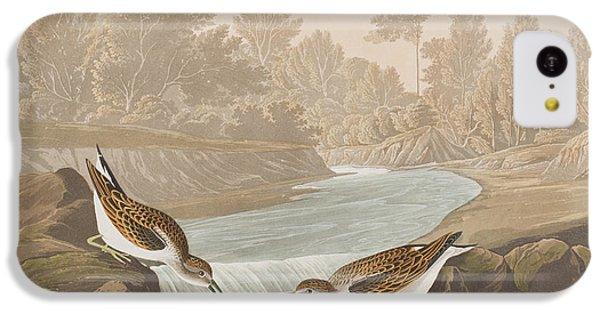 Little Sandpiper IPhone 5c Case by John James Audubon