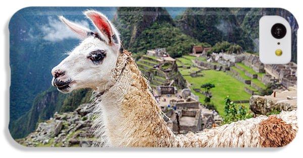 Llama At Machu Picchu IPhone 5c Case by Jess Kraft