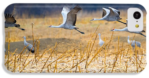 Low Level Flyby IPhone 5c Case by Mike Dawson