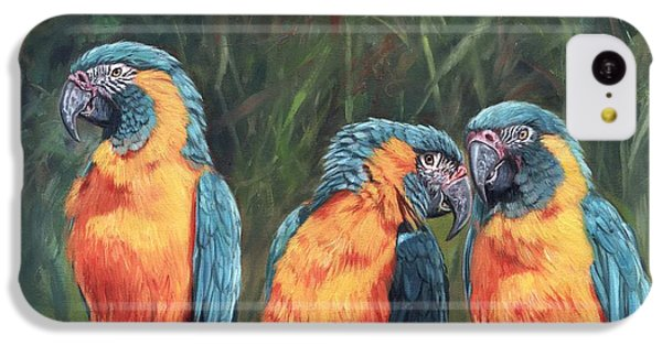 Macaws IPhone 5c Case by David Stribbling