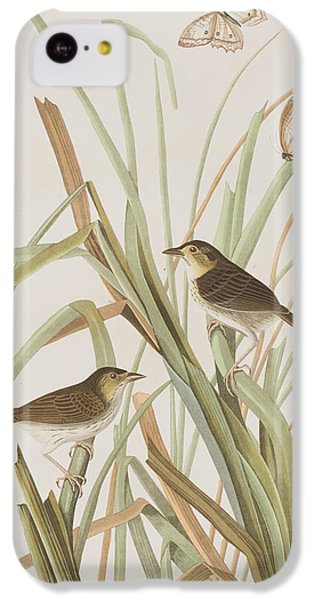 Macgillivray's Finch  IPhone 5c Case by John James Audubon