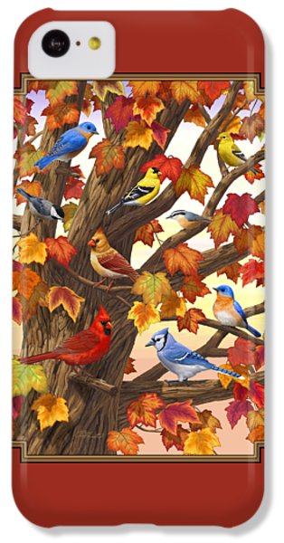 Maple Tree Marvel - Bird Painting IPhone 5c Case by Crista Forest