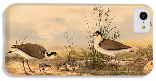 Masked Lapwing IPhone 5c Case by Mountain Dreams