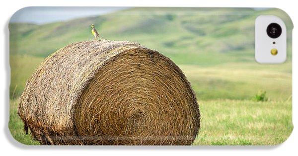 Meadowlark Heaven IPhone 5c Case by Todd Klassy