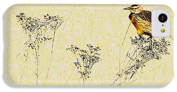 Meadowlark In Kansas Prairie 1 IPhone 5c Case by Anna Louise