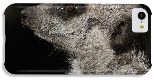 Meerkat Profile IPhone 5c Case by Ernie Echols