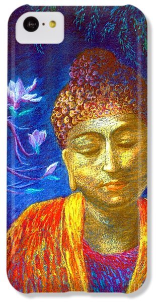 Meeting With Buddha IPhone 5c Case by Jane Small