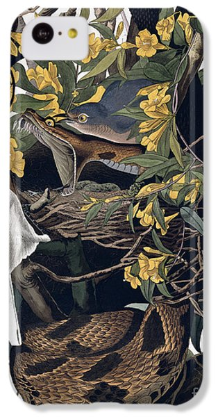 Mocking Birds And Rattlesnake IPhone 5c Case by John James Audubon