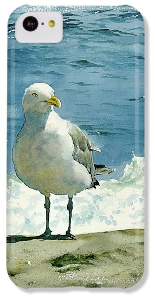 Montauk Gull IPhone 5c Case by Tom Hedderich