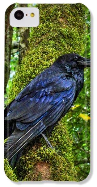 Muir Woods Raven 001 IPhone 5c Case by Lance Vaughn