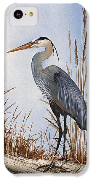 Nature's Gentle Beauty IPhone 5c Case by James Williamson