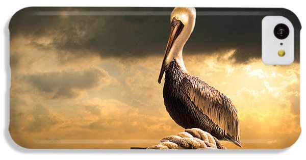 Pelican After A Storm IPhone 5c Case by Mal Bray