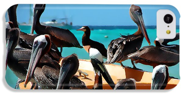 Pelicans On A Boat IPhone 5c Case by Bibi Romer