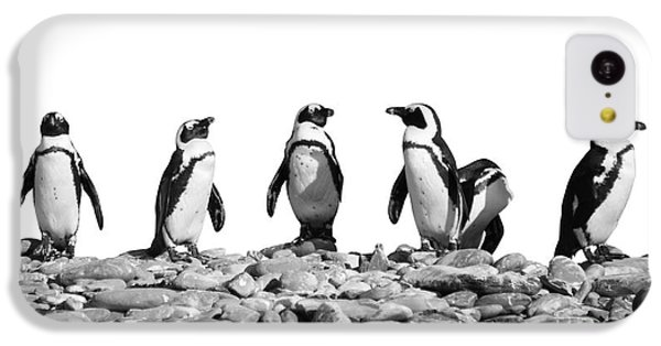 Penguins IPhone 5c Case by Delphimages Photo Creations