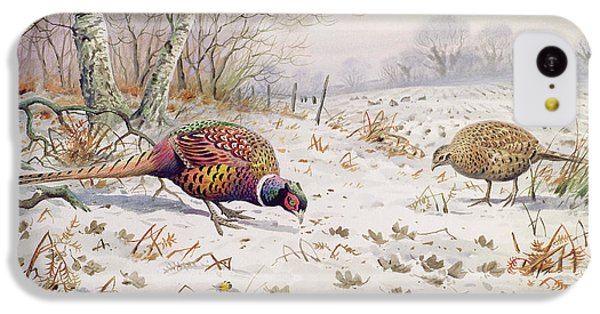 Pheasant And Partridge Eating  IPhone 5c Case by Carl Donner