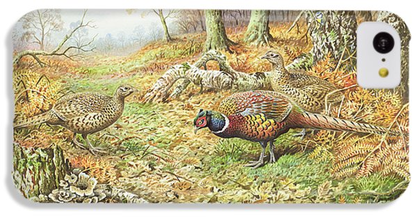 Pheasants With Blue Tits IPhone 5c Case by Carl Donner
